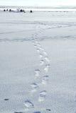 fiskare landscape vinter royaltyfri bild