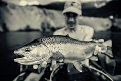 Fiskare med låset av regnbågeforellen, Slovenien royaltyfria foton