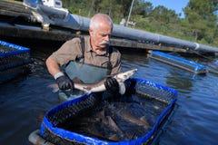 Fiskare och fisklantgård Royaltyfri Bild
