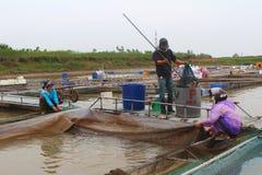 Fiskare och fisklantgård i floden Royaltyfria Bilder