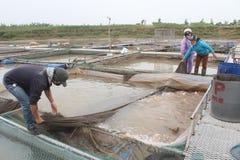 Fiskare och fisklantgård i floden Arkivfoto