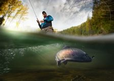 Fiskare och forell, undervattens- sikt royaltyfri foto