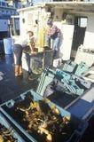 Fiskare som förbereder fartyget Arkivfoto