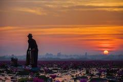 Fiskare som fiskar i det guld- ljuset för otta Royaltyfri Bild