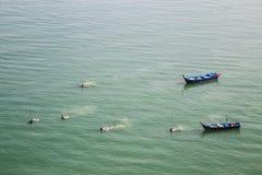 Fiskare som skördar skaldjur och fisken från havet med netto royaltyfri foto