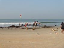 Fiskareaffär i Goa arkivfoto