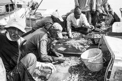fiskarearbete på fartyget Arkivfoton