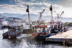 Fiskarefjärd av Yalova Turkiet Royaltyfri Fotografi