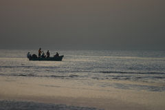 fiskaremuscat royaltyfri foto