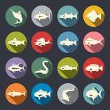 Fiskartsymboler vektor illustrationer
