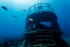 Fiskbad till och med rest av undervattens- skeppsbrott Royaltyfri Fotografi