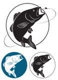 Fiskbas royaltyfri illustrationer