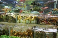 Fiskbehållare av den havs- restaurangen Arkivbild