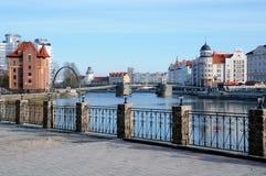 Fiskby. Kaliningrad. Ryssland arkivbild