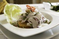 Fiskceviche, peruansk kokkonst Typisk maträtt av peruansk kokkonst royaltyfri fotografi