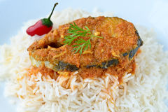 Fiskcurry och rice Arkivfoto