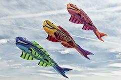 Fiskdrakar i himlen Fotografering för Bildbyråer