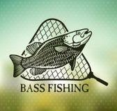 fiske Arkivbilder