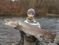 Fiske för Donaulaxhucho i Centraleuropa royaltyfri fotografi
