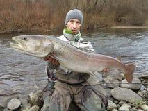 Fiske för Donaulaxhucho i Centraleuropa royaltyfri bild