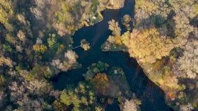 Fiske sjö på hösten stock video