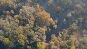 Fiske sjö på hösten lager videofilmer