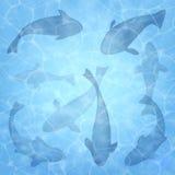 fiske Sommarbakgrund med fisken Fiskuppsättning som bakgrund är kan surface textur använt vatten Över huvudet sikt Bakgrund för v stock illustrationer