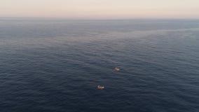 Fiskebåt i havet, indonesia arkivfilmer