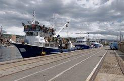 Fiskebåtar i en hamn Arkivbild