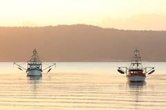 Fiskebåtar i fjärd på soluppgången Fotografering för Bildbyråer