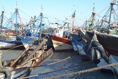 Fiskebåtar i hamnen av Essaouira royaltyfri foto
