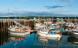 Fiskebåtar i hamnen på lågvatten i Digby, Nova Scotia Arkivbild