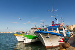 Fiskebåtar i porten av Trapani Arkivfoto