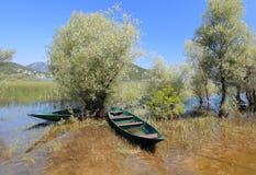 Fiskebåtar i Skadar sjön Royaltyfri Foto