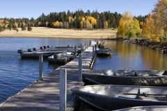 Fiskebåtar och Fallfärger i Arizona Arkivbilder