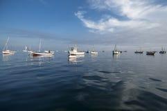 Fiskebåtar på den peruanska fjärden royaltyfria foton
