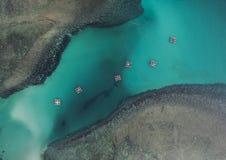 Fiskebåtar som svävar i havet från över, Bintan ö, Indonesien Royaltyfria Bilder