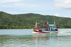 Fiskebåtavresor för fisk och tioarmad bläckfisk royaltyfri fotografi