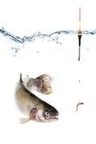 Fiskebegrepp, krok med bete och flöte, fisk som isoleras på vit Royaltyfri Bild