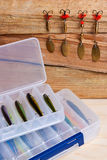Fiskebeten på träbakgrund Royaltyfri Bild