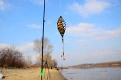 Fiskeförlagematare Fotografering för Bildbyråer