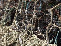 Fiskefiskkorgar på den Craster hamnen Northumberland arkivbild