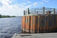 Fiskefläck Royaltyfria Bilder