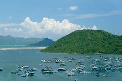 fiskeHong Kong by Fotografering för Bildbyråer