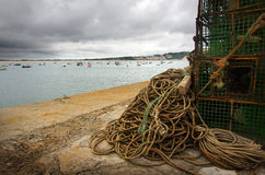 fiskekugghjul Arkivfoton