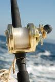 fiskekugghjul Arkivbild