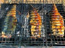 Fisken bakade på branden på gallret fotografering för bildbyråer