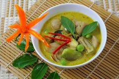 Fisken klumpa ihop sig grön curry. Royaltyfri Foto