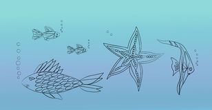 Fisken och sjöstjärnan bor i havet Arkivfoto