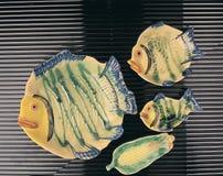 Fisken pläterar Royaltyfri Foto